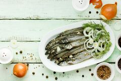 Salted fish marinated with spices Royalty Free Stock Photography