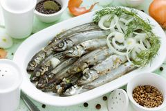 Salted fish. Marinated with spices and onion Stock Photography