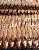 Salted fish Stock Photos
