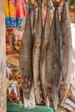 Salted fish in the market, King mackerel. Salted fish in the market, King mackerel, Thailand Royalty Free Stock Photo