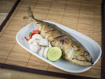 Salted fish Spicy salted Royalty Free Stock Photos