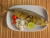 Salted fish Spicy salted Royalty Free Stock Photography