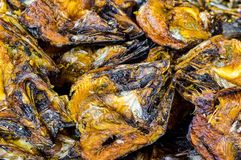 Salted fish Royalty Free Stock Image
