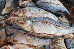Salted fish Royalty Free Stock Photo