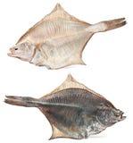 Salted flatfish Royalty Free Stock Photography