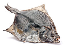 Salted flatfish Stock Photos