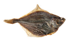 Salted flounder isolated on the white Royalty Free Stock Photos