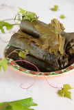 Salted grape leaves in bowl Royalty Free Stock Photography