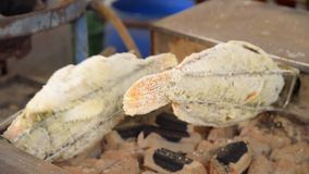 Salted Grilled fish rolling with charcoal stove stock footage