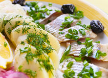 Salted herring. Slice with boiled potato Royalty Free Stock Image