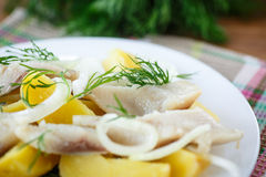 Salted herring with boiled potatoes Royalty Free Stock Photography