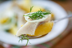 Salted herring with boiled potatoes Stock Photo