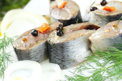 Salted herring in oil and marinade Royalty Free Stock Photography