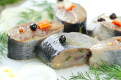 Salted herring in oil and marinade Royalty Free Stock Photo