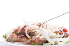 Salted herring with onions Royalty Free Stock Image