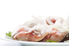 Salted herring with onions Stock Photography