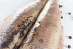 Salted herring on the plate with red onion stock image