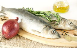 Salted herring Royalty Free Stock Photos