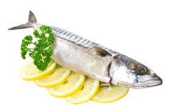 Salted mackerel Royalty Free Stock Image