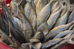 Salted mackerel, dried in a basket.  Royalty Free Stock Image