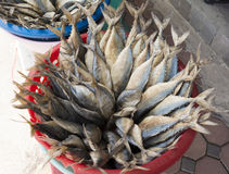 Salted mackerel, dried in a basket.  Stock Photography