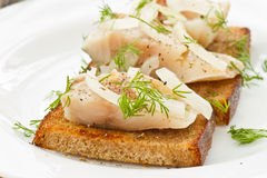 Salted mackerel with grilled toast Stock Image
