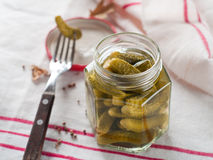 Salted or marinated cucumbe Stock Photography