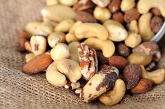 Salted mix nut Stock Photography