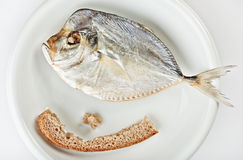 Salted moonfish with crust of bread Royalty Free Stock Photography