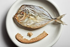 Salted moonfish with crust of bread Royalty Free Stock Photos
