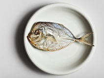 Salted moonfish on white plate Royalty Free Stock Images