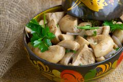 Salted mushrooms. In a decorative cup Stock Photography