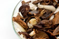 Salted mushrooms in glass dish Royalty Free Stock Images
