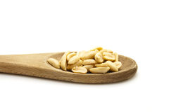 Salted Peanuts Stock Images