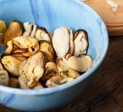 Salted peeled mussels with lemon. top veiw Stock Images