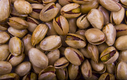 Free Salted Pistachios Royalty Free Stock Photo - 11149285