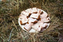 Salted pork fat and rye bread. table covered with hay royalty free stock image