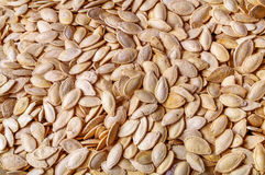 Salted Pumpkin Seed background Royalty Free Stock Images
