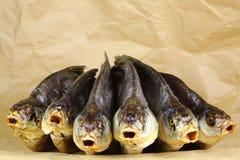 Salted a séché des poissons Images libres de droits