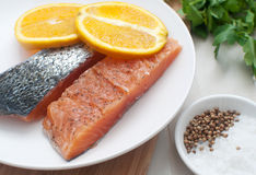 Salted salmon fillets with oranges Royalty Free Stock Photos