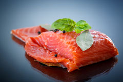 Salted salmon fillets Stock Images