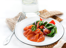 Salted salmon with fresh green salad, crisps on side Royalty Free Stock Photos