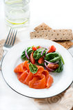 Salted salmon with fresh green salad, crisps on side Stock Photos