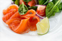 Salted salmon with fresh green salad and lime Stock Photo