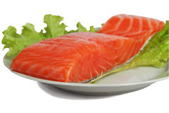 Salted salmon on salad leaves Stock Image