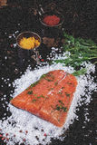 Salted salmon with spices Stock Photos