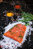 Salted salmon with spices Stock Images