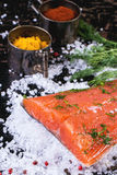 Salted salmon with spices Royalty Free Stock Photo