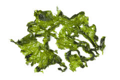 Salted sea lettuce Stock Photos