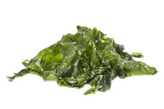 Salted sea lettuce. On white background Royalty Free Stock Photo